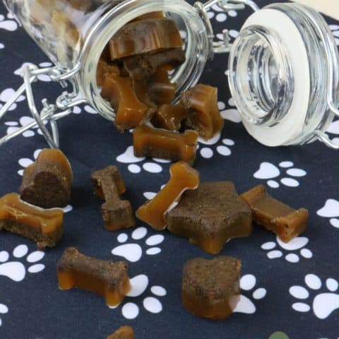 Gummy homemade dog training treats spilling out of glass jar on its side